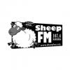 Sheep FM