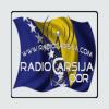 Radio Carsija
