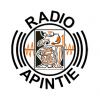 Radio Apintie