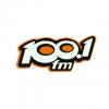 Radio 100.1 FM