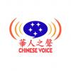 Chinese Voice